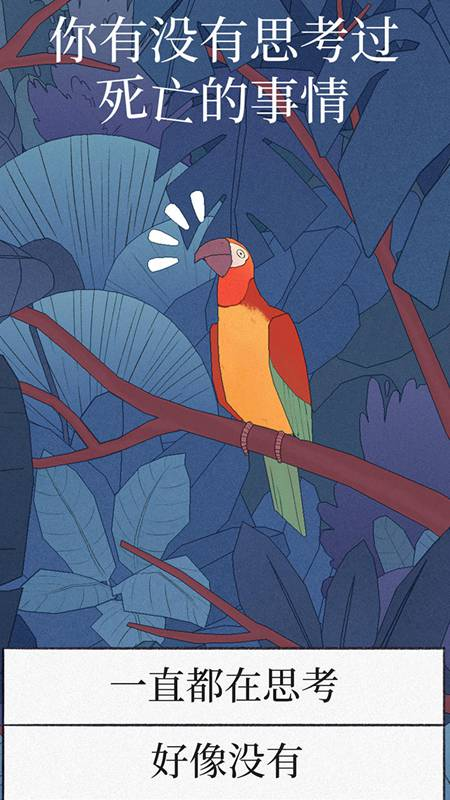 孤独的鸟儿免费版最新版