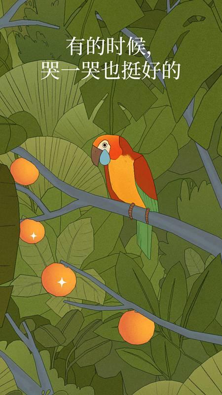 孤独的鸟儿免费版